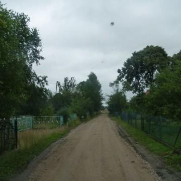 droga o nawierzchni piaszczystej z drzewami na posesjach po obu stronach drogi